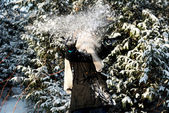 Woman playing snowball — Stockfoto