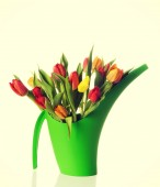 Bouquet of fresh living tulips. — Stock Photo