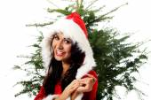Santa woman with christmas tree — Stock Photo