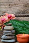 Aromaterapie lázně sada. — Stock fotografie