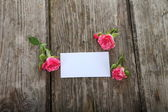 Pink roses and greeting card  — Foto de Stock
