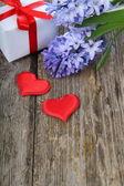 Giacinto blu, due cuori e biglietto di auguri — Foto Stock