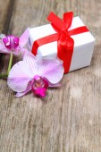 Holidays gift and orchid  — Stock Photo
