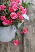 Buquê de rosas em um regador — Fotografia Stock