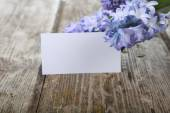 Blue hyacinths and greeting card — Stock Photo