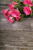 Strauß rosa rosen — Stockfoto