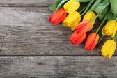 Buquê de tulipas — Fotografia Stock