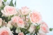 美丽的粉红色玫瑰捧花 — 图库照片