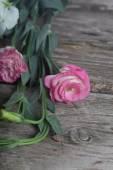 Pink eustoma  — Zdjęcie stockowe