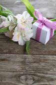 White alstroemeria and gift  — Stok fotoğraf