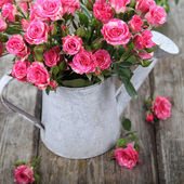 Bouquet of pink roses  in watering can — Stock fotografie