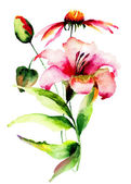 Watercolor illustration of flowers — Stockfoto