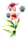 Fleurs d'été original — Photo