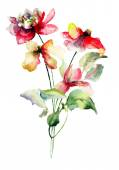 Oorspronkelijke zomerbloemen — Stockfoto
