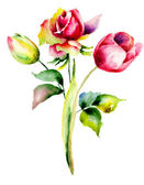 Tulips and Rose flowers — Stock Photo
