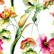 Watercolor illustration of colorful flowers — Stock Photo #68687471