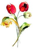 Original Tulips flowers — Stock Photo