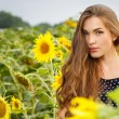 Girl in the field full of sunflowers — Stock Photo #54883845