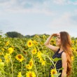 Girl in the field full of sunflowers — Stock Photo #54883877