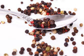 Peppercorn with a spoon — Foto de Stock