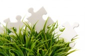 White puzzle in green grass — Stock Photo