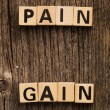 Words pain and gain on toy bricks — Stock Photo #57976225