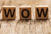 Word wow on toy bricks — Stock Photo