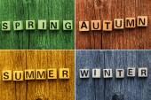 Word of seasons on toy bricks — Stock Photo