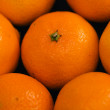 Close up of heap of mandarins — Stock Photo #58997037