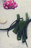 Aloe vera on the table — 图库照片