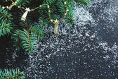 Fir with snow on the table — Stock Photo
