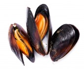 Delicious mussels on a white — Stock Photo