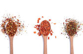 Spices in wooden spoons — Stock Photo