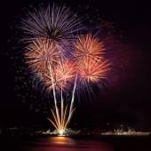 Firework in night sky — Stock Photo