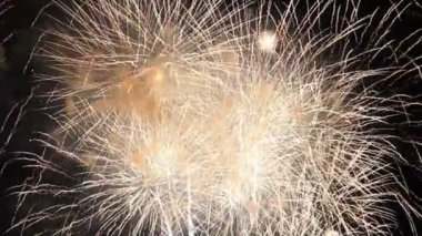 Fireworks in night sky — Stock Video