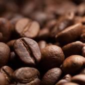Roasted coffee grain — Stock Photo