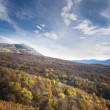 Colorful autumn forest under blue sky with clouds — Stock Photo #56805105