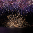 Firework over the water — Stock Photo #60330811