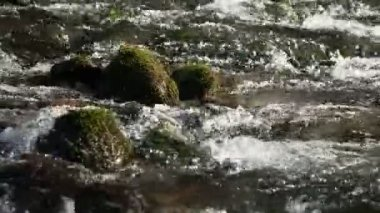 The flow of water through the rocks — Stock Video