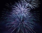 Fireworks in night sky — Stock Photo