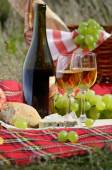 Wine cheese bread and fruits — Stock Photo