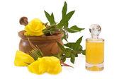 Evening primrose bath — Stock Photo