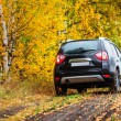 Crossover in front of autumn forest — Stock Photo #54757487