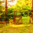 Old wooden gate in forest — Stock Photo #66467767