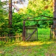 Old wooden gate in forest — Stock Photo #66467991