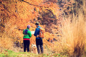 Vintage instagram couple hiking in autumn forest — Stock Photo