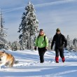 Couple hiking with dog in winter mountains — Stock Photo #59761583
