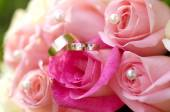 Обручальные кольца и розовых роз — Стоковое фото