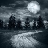 Magic night landscape with empty rural road going under full moon — Foto Stock