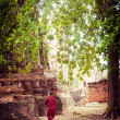 Buddhist monk at ancient ruins of Wat Mahathat. Ayutthaya, Thailand — Stock Photo #53813655